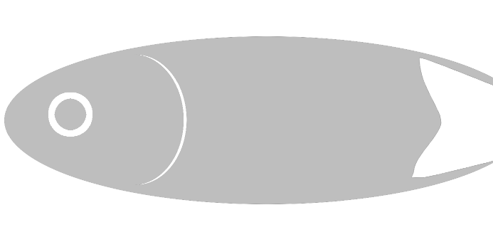 Döbel  from Saale  by Aal-Ralf