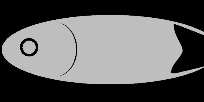 Karpfen from Stau Podelsatz   by Aal-Ralf
